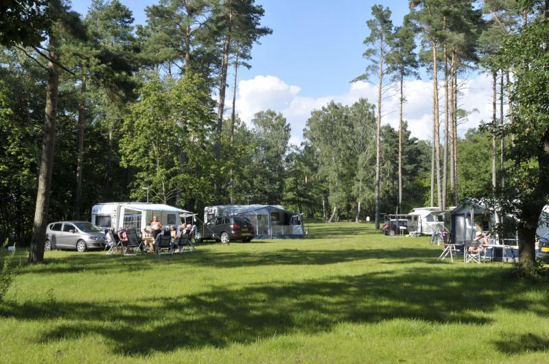 CampingPlatz_Ecktannen_standard
