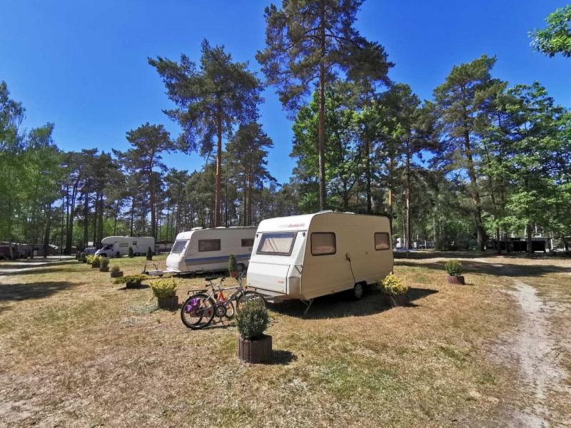 Waldcamping_Am_Grosssee_standard